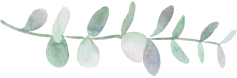 PaperSphinx_Eucalyptus_11b